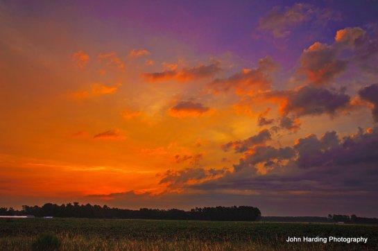 Premonition Posted to flickr September 2, 2014